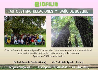 biofilia 2021